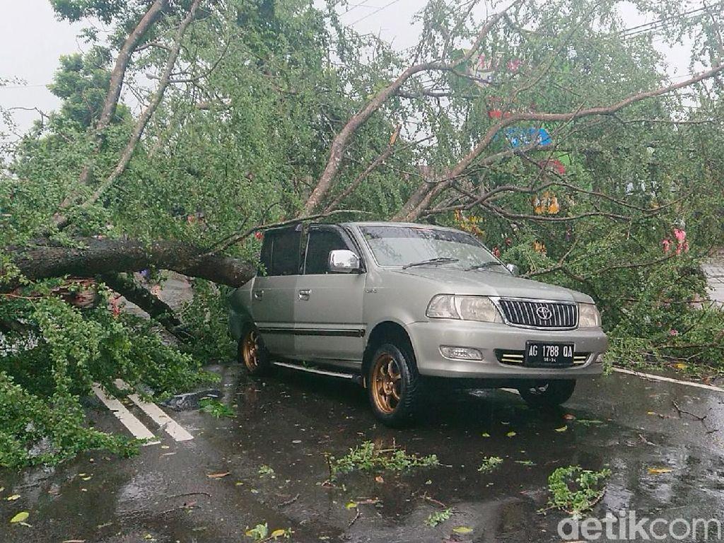 Niat Menepi Karena Hujan, Mobil Ini Keburu Tertimpa Pohon Tumbang