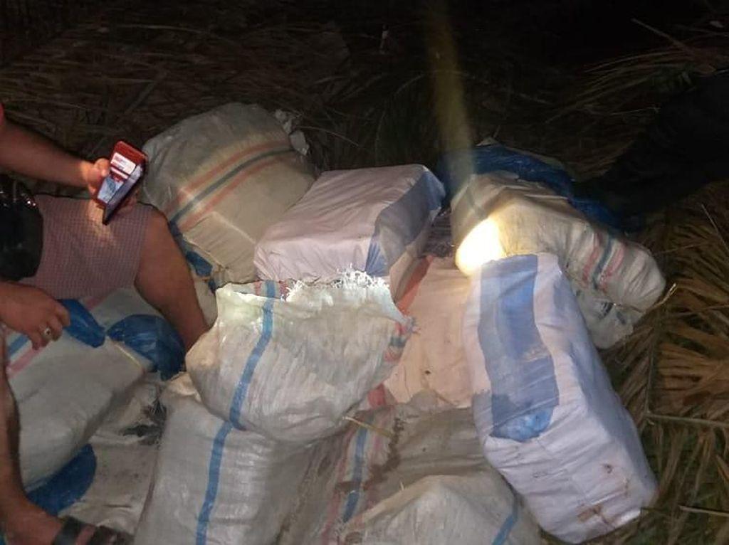 Polisi Amankan 350 Kg Ganja di Padangsidimpuan, Pemiliknya Diburu