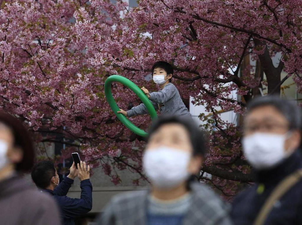 Sulitnya Menahan Diri Tak Saksikan Mekarnya Bunga Sakura