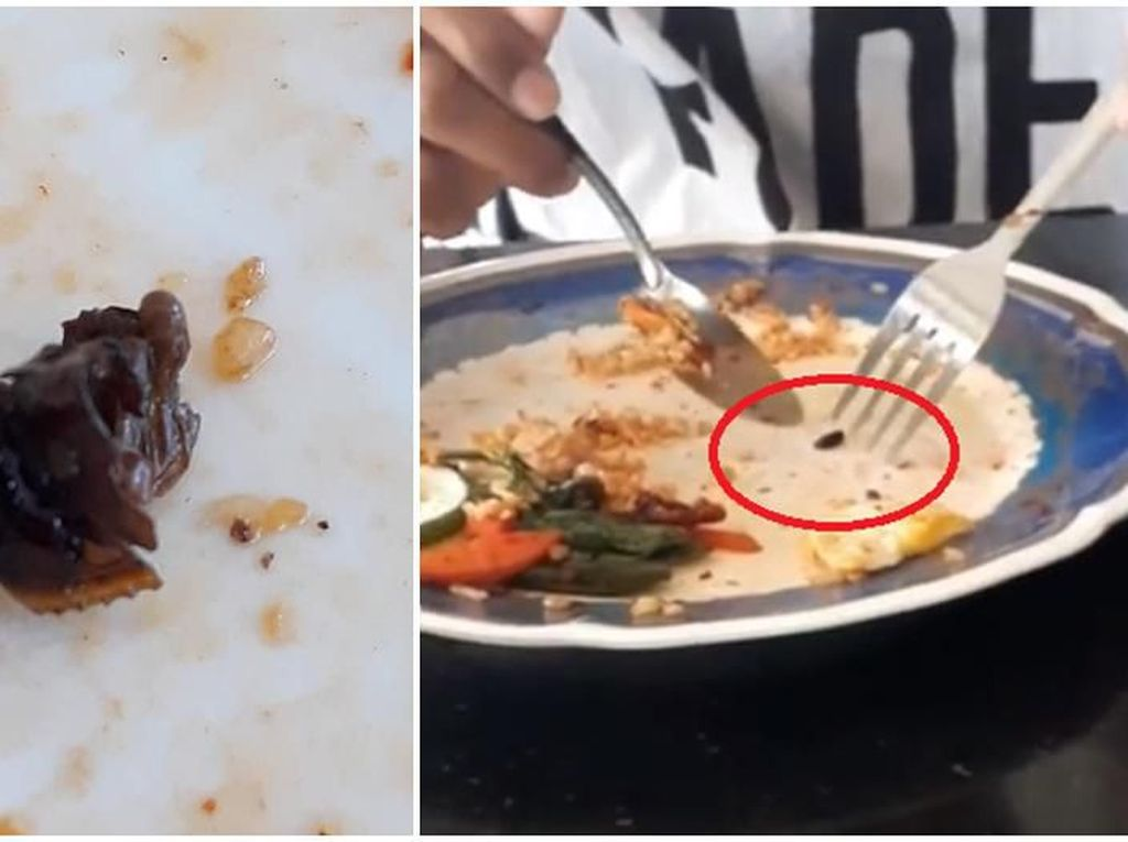 Hii... Jijik! Pria Ini Temukan Telur Kecoa di Nasi Goreng
