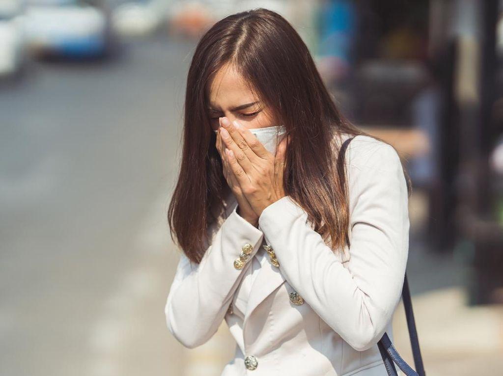 Partikel Debu Juga Bisa Sebarkan Virus Flu