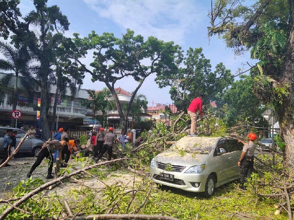 2 Mobil Ringsek Tertimpa Pohon Tumbang di Depan Rumah Wawalkot Padang