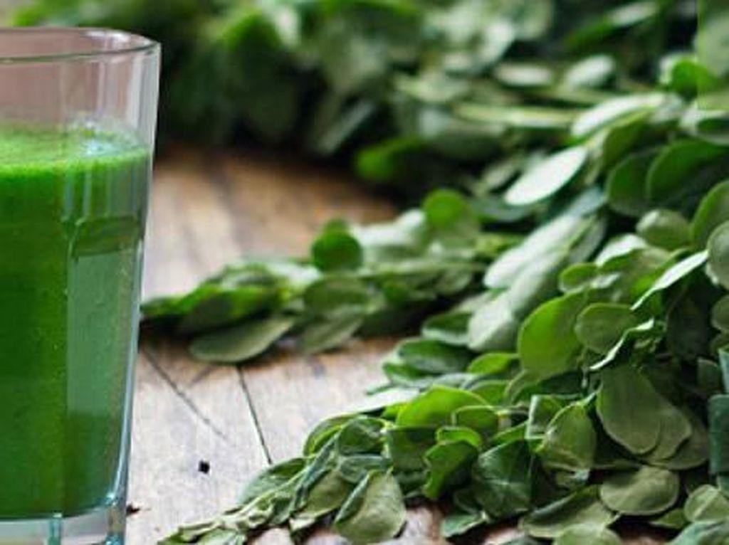 Sarat Mitos, Ternyata Daun Kelor Bisa Diolah Jadi Makanan Enak
