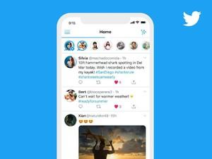 Twitter Fleet Dapat Sambutan Beragam dari Netizen Indonesia