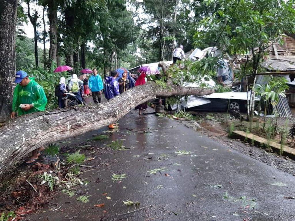 Pohon Tumbang Rusak Rumah dan Dua Mobil di Pangandaran