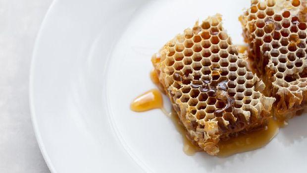Bee propolis dari sarang lebah