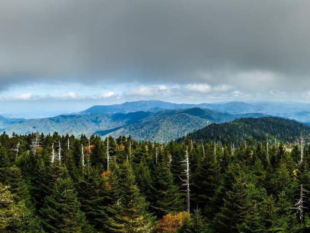 Wisata Alam dan Taman Nasional Terpopuler di Amerika Serikat