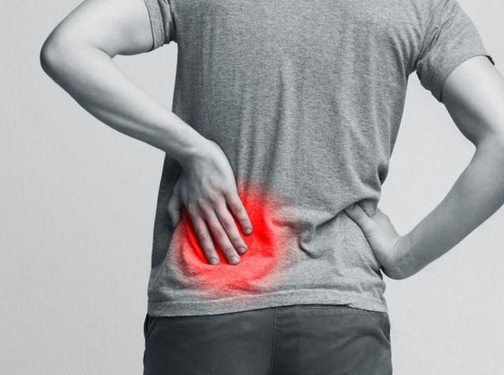 Yuk Kenali Beda Posisi Sakit Ginjal dan Sakit Punggung