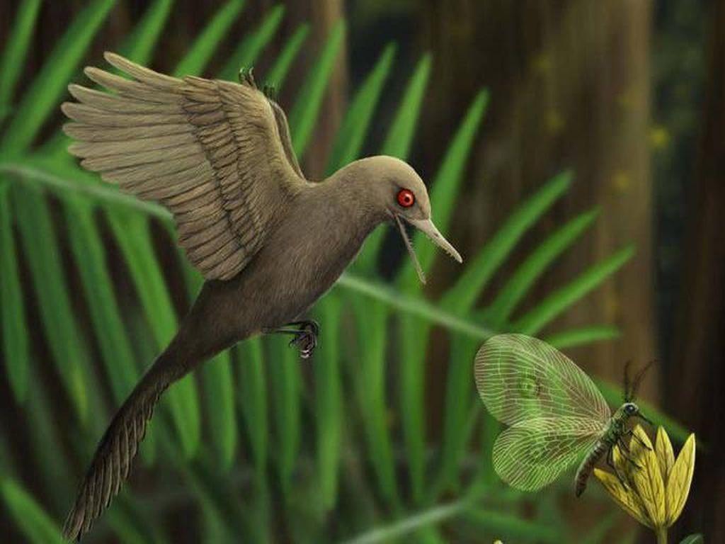 Fosil Dinosaurus Terkecil di Dunia Ditemukan di Myanmar