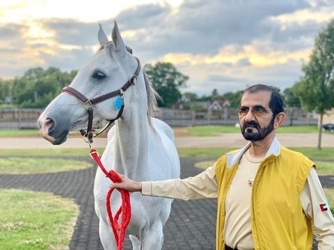 Heboh Pangeran Dubai, Rashid Al Maktoum Paksa Putrinya Usia 11 Tahun Nikah