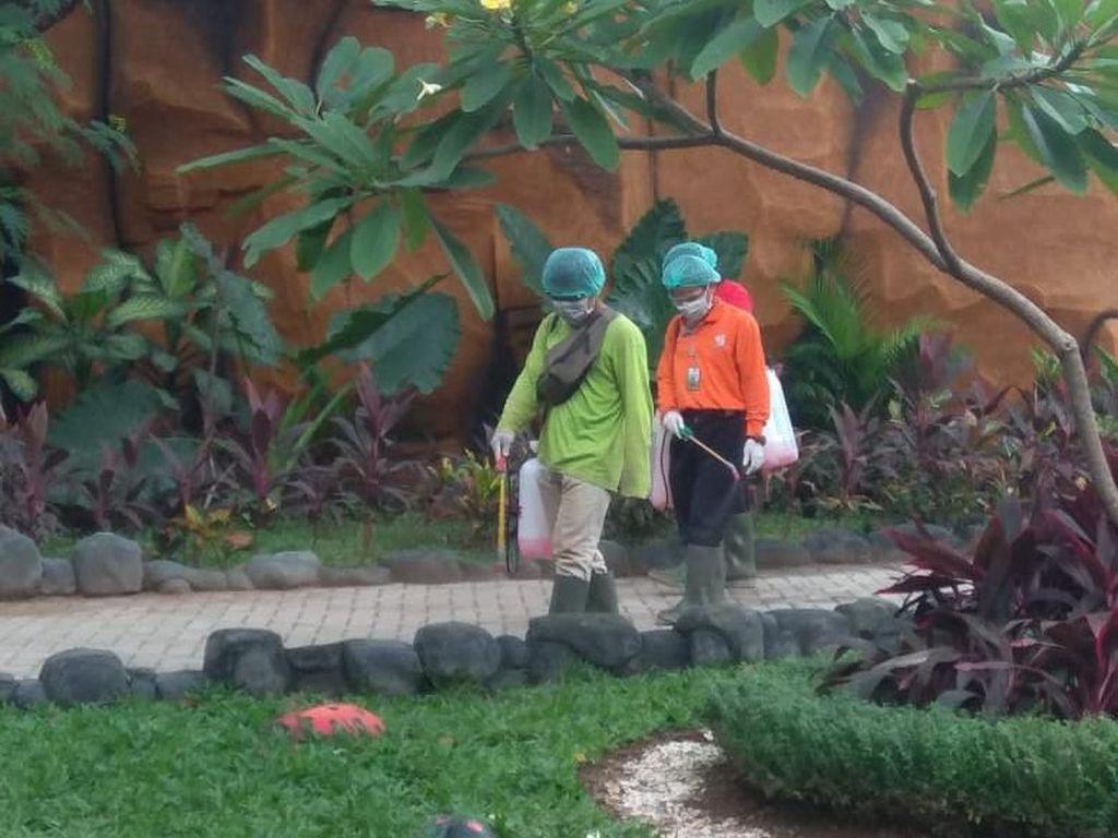 Masih Buka, Kebun Binatang Surabaya Disemprot Disinfektan Tiap 1 Jam