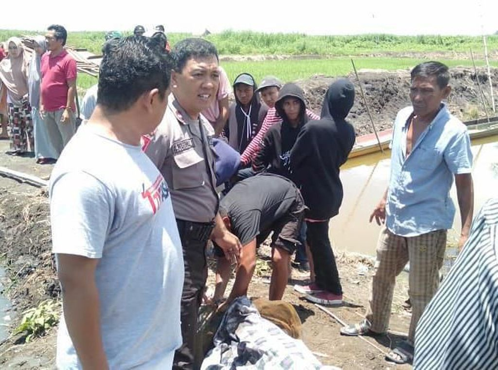 Duel di Sawah Sengketa, Petani di Bone Tewas Diparang 2 Pria