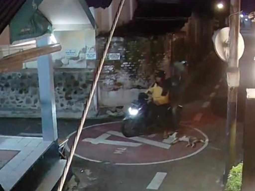 Tebar Racun di Jalanan, Cara Baru Para Maling Anjing di Klaten