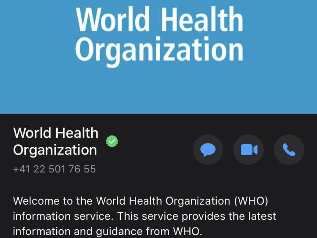 Jajal Chatbot WhatsApp WHO Terkait Virus Corona COVID-19