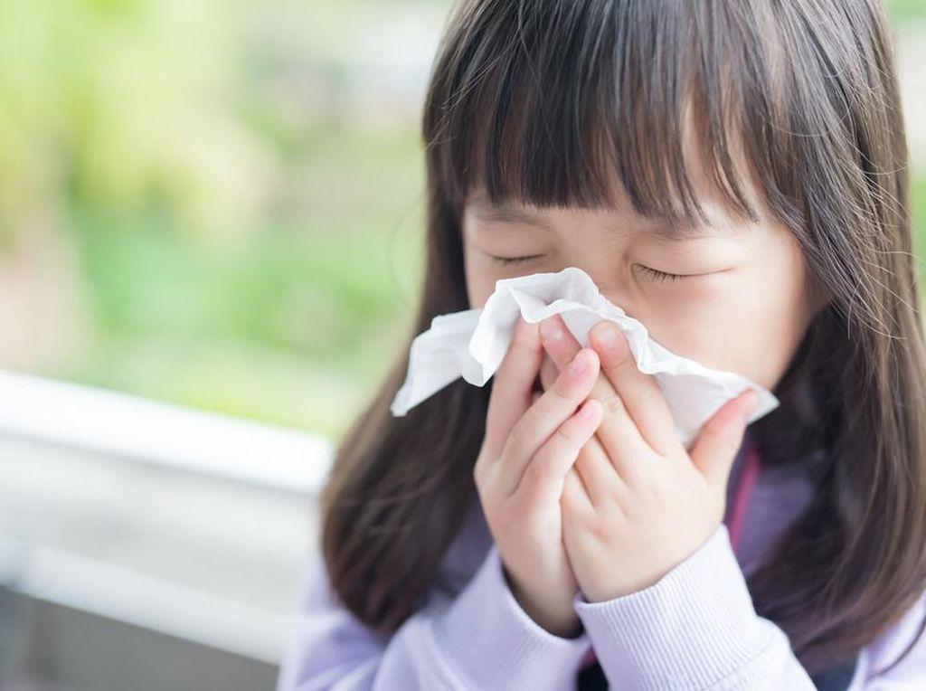 Tampak Mirip, Kenali Perbedaan Alergi, Flu dan Corona