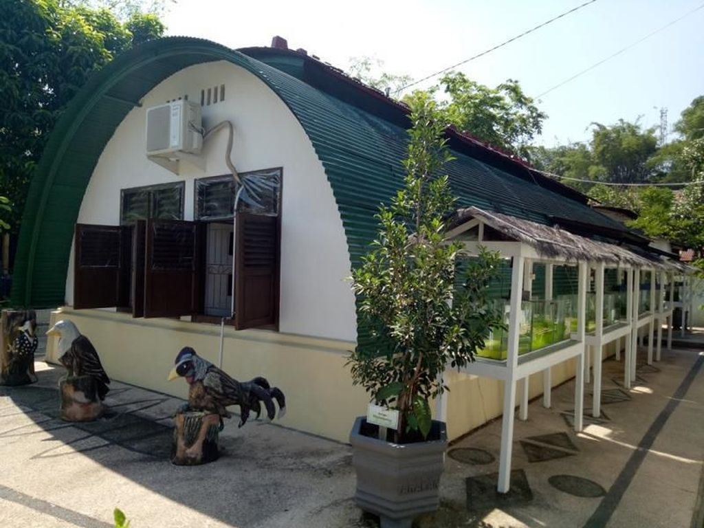 Uniknya Rumah Bundar Tinggalan Belanda di Pulau Tarakan