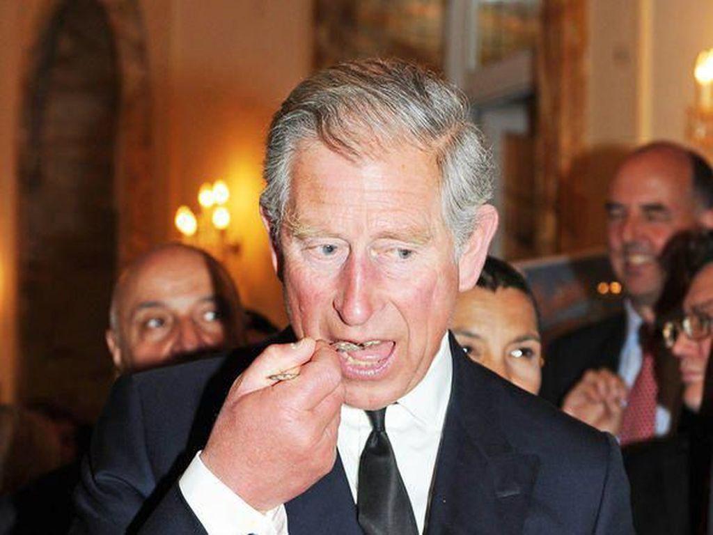 Istana Beri Update Kondisi Terkini Pangeran Charles Usai Positif Corona