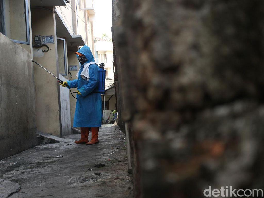 Sebaran Pasien Virus Corona di Indonesia, 150 Sembuh, 191 Meninggal