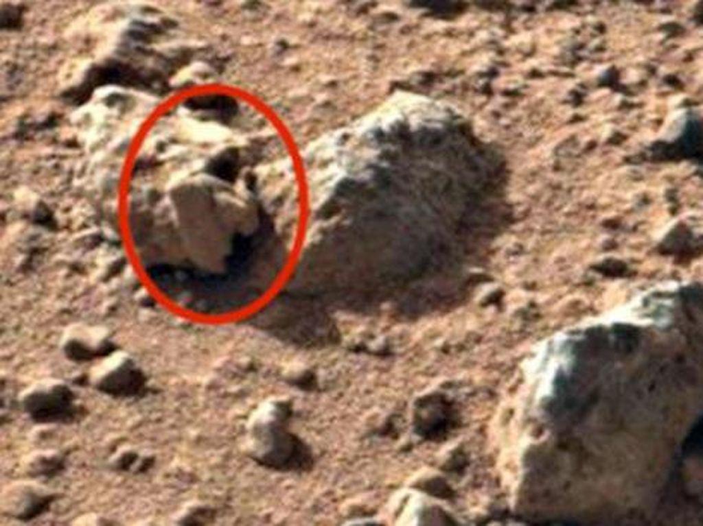 Pencari Alien Klaim Temukan Bukti Kehidupan Masa Lalu di Mars