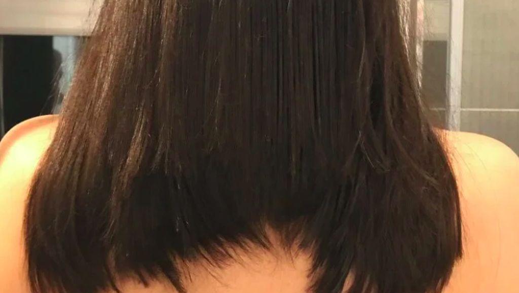 Kumpulan Foto Lucu Hasil Potong Rambut Sendiri di Rumah