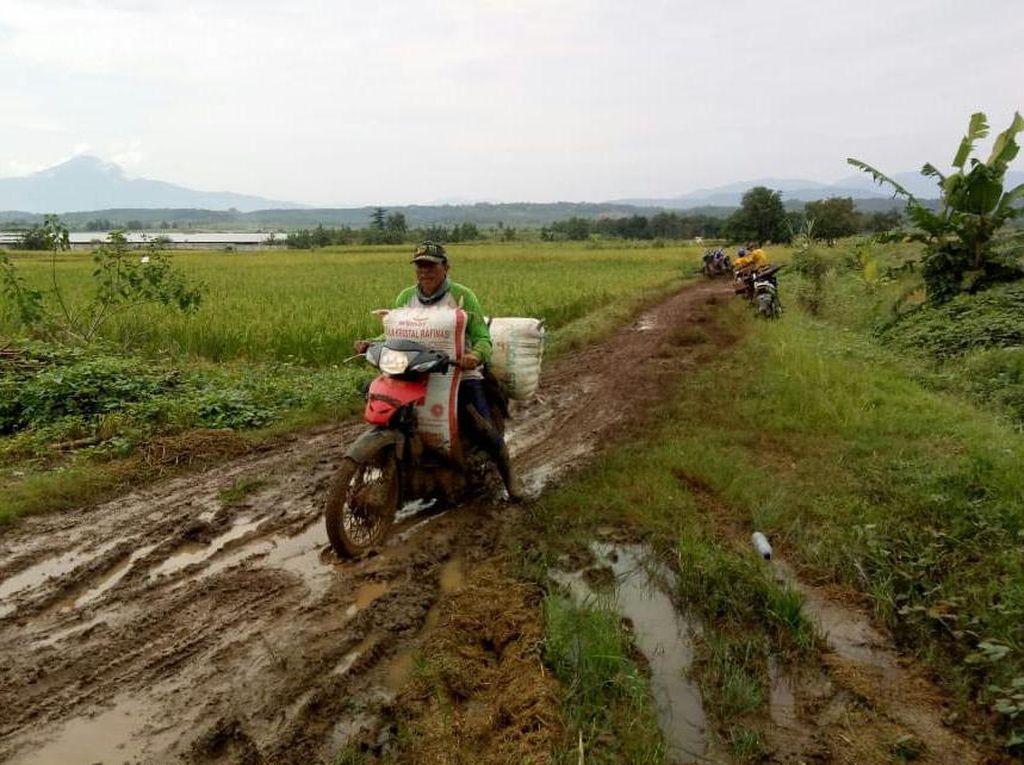 Petani Indramayu Terapkan Protokol Cegah Corona saat Panen Raya