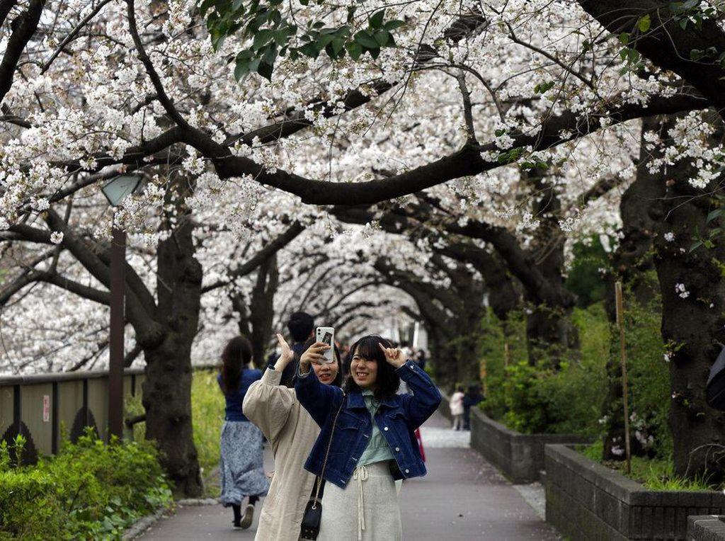 Mau Menetap di Jepang? Ini Cara Dapatkan Visa Tinggal Permanen
