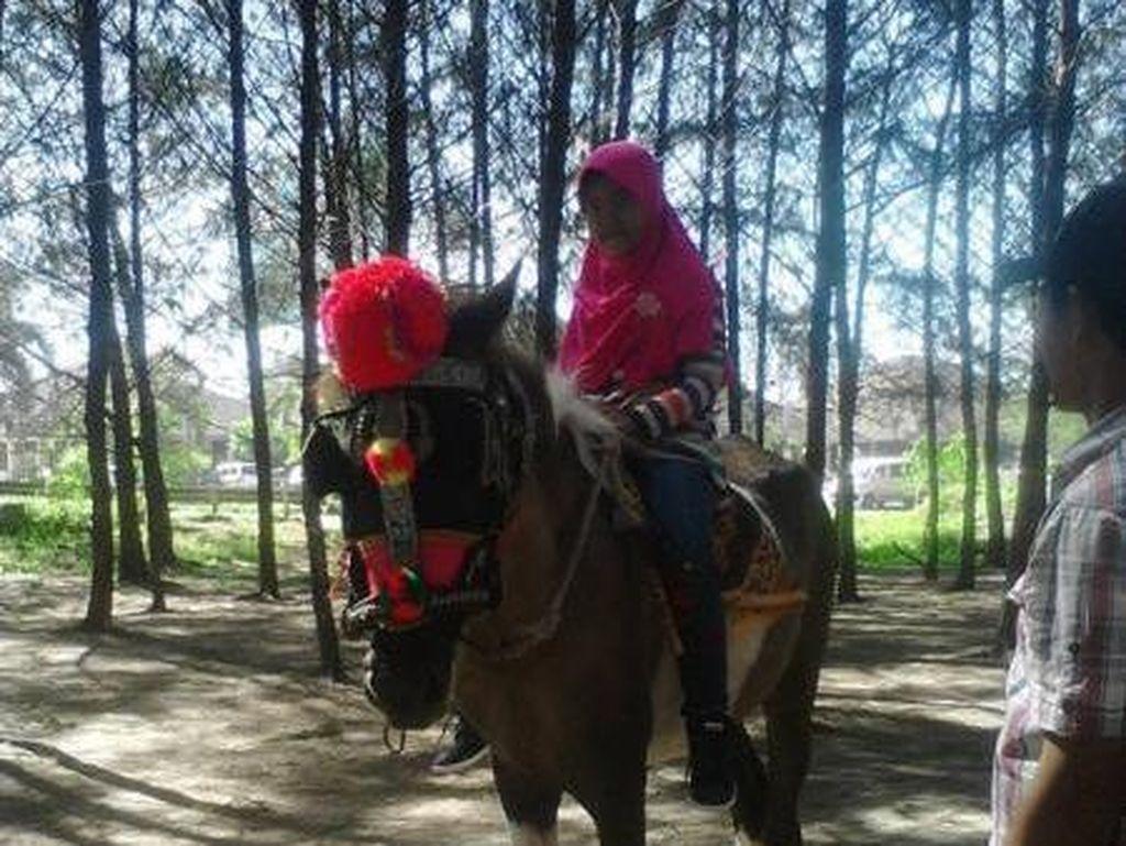 Tips Naik Kuda Bagi Anak-anak
