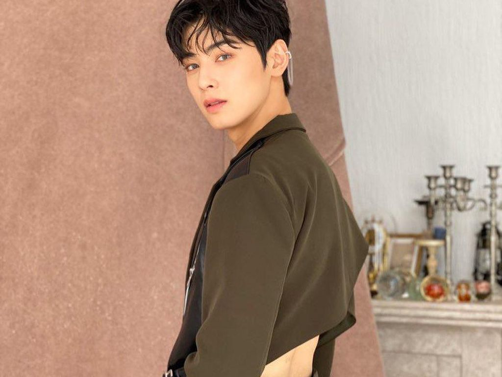 Cha Eun Woo Diincar Bintangi Drama Adaptasi Webtoon True Beauty