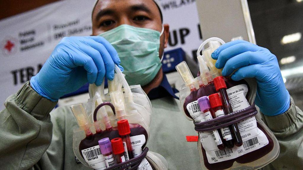 Stok Darah PMI Berkurang Akibat COVID-19