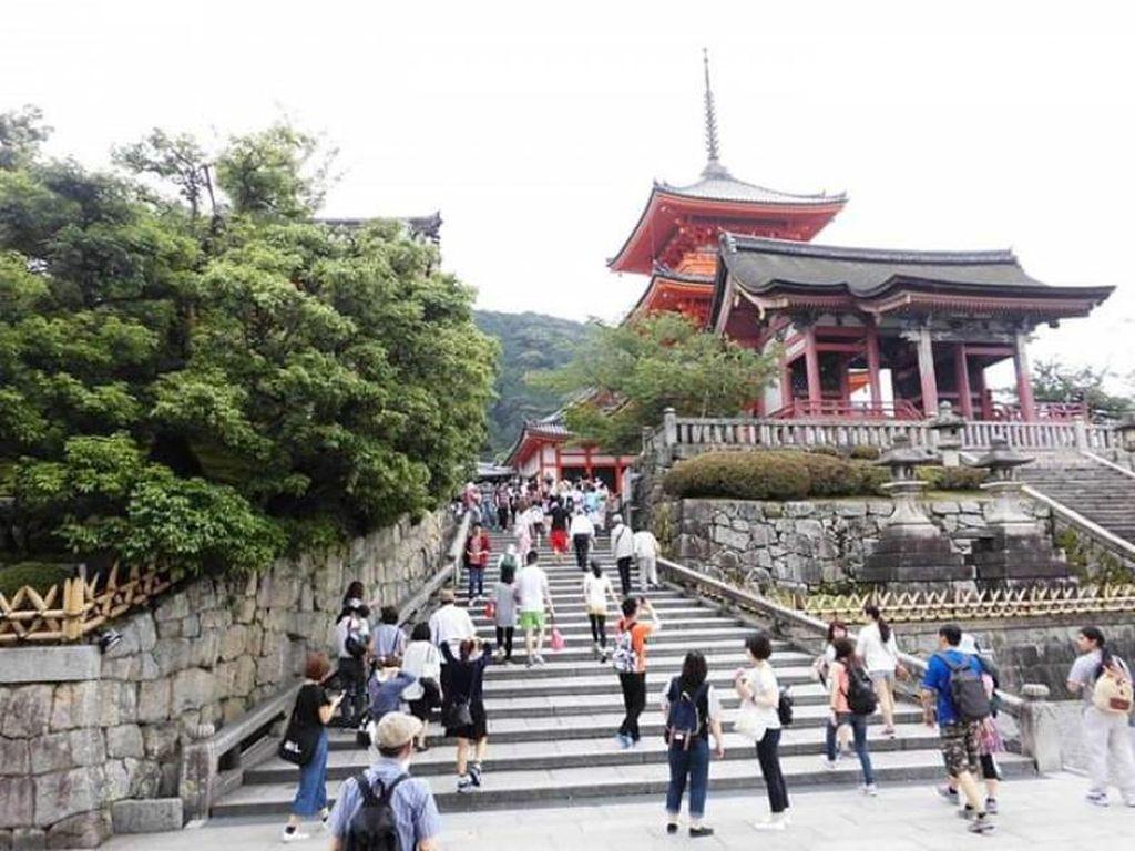 Indahnya Pemandangan dari Puncak Kuil Kiyomizudera Kyoto