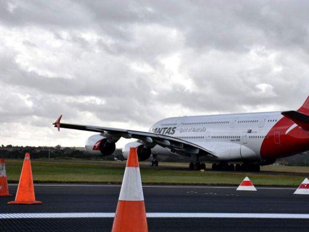 Australia Dorong Ekspor Produk Segar dengan Pesawat, Pulangnya Bawa Alat Medis