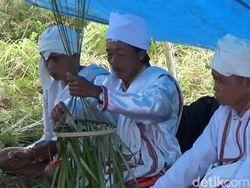 Warga Mamasa Sulbar Gelar Ritual Marompo Bamba Tangkal Corona