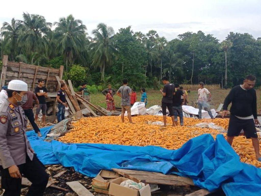 Rumah Kebun Berisi 10 Ton Jagung Roboh di Bone Sulsel, 5 Orang Tewas