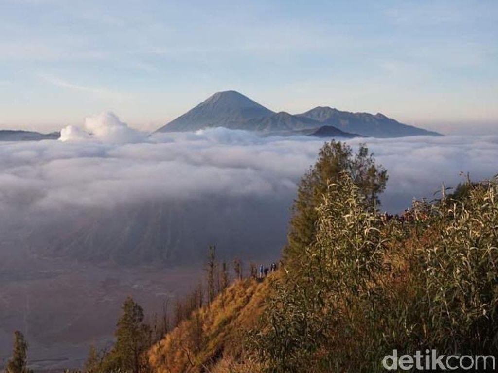 Getaran Gempa M 5,2 di Blitar Terasa hingga Gunung Bromo