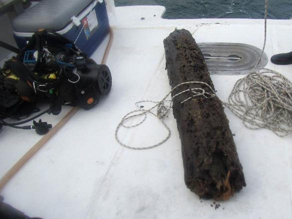 Ilmuwan Temukan Hutan Bawah Laut, Bisa Ciptakan Obat-obatan Baru