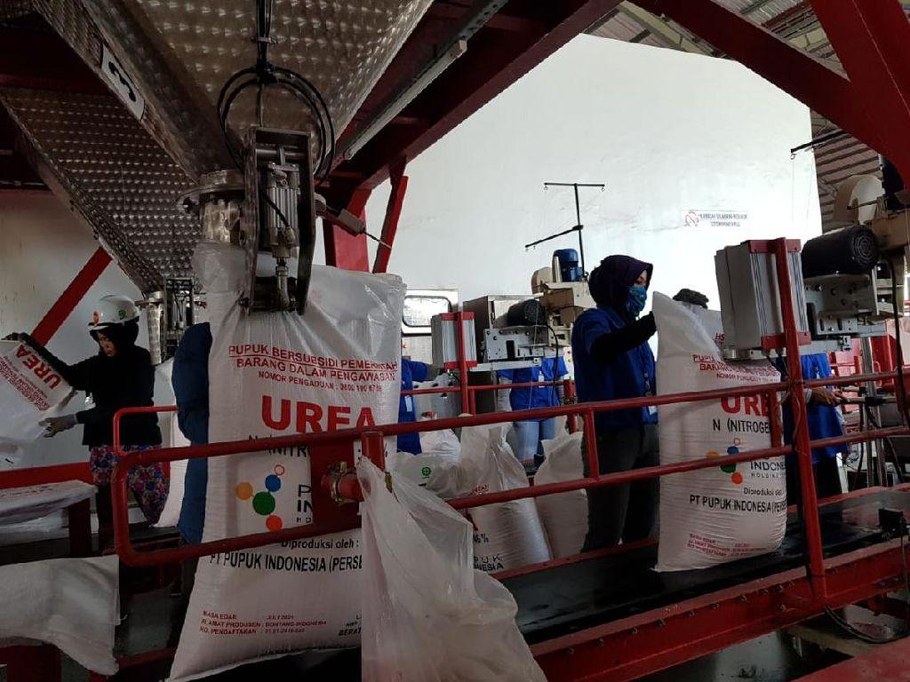 Tidak Jual Pupuk Subsidi Sesuai HET, Distributor Bisa Ditindak Tegas