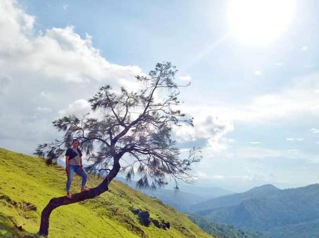 Membasuh Rindu di Timor Tengah Selatan