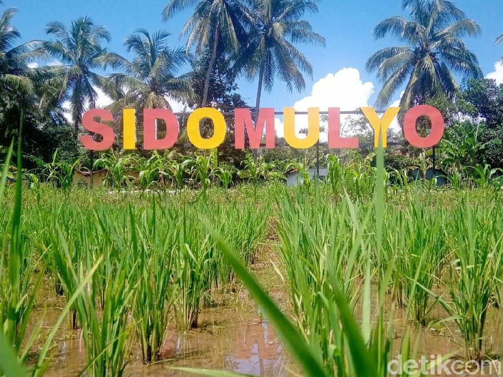 Desa di Purworejo Sediakan Lahan Pemakaman Jasad Pasien Corona yang Ditolak