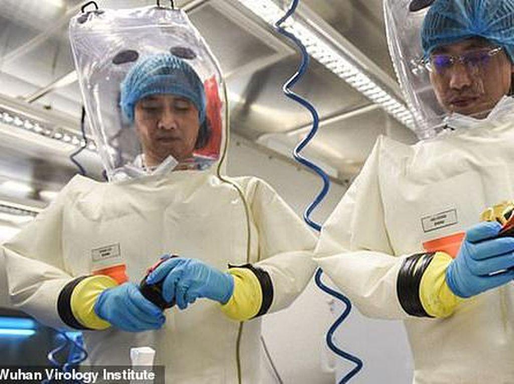 Ilmuwan Lab Wuhan Disarankan Bela Diri dari Tudingan Biang Corona