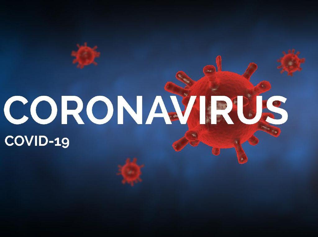 Pandemi COVID-19, PELNI Lakukan Penyesuaian Jadwal Operasional
