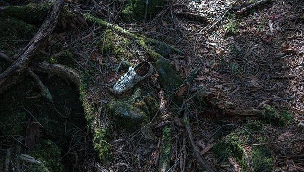 Foto: Hutan Tempat Langganan Bunuh Diri di Jepang