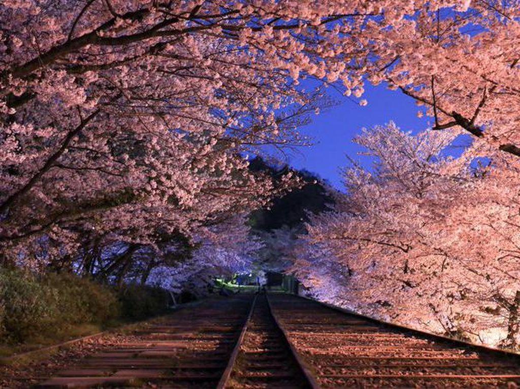 Potret Destinasi Teromantis Kyoto dengan Kisah Kelam