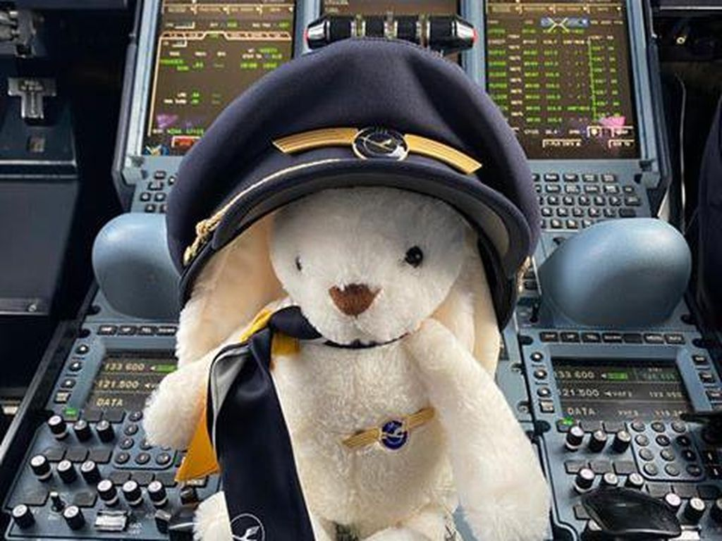 Gemasnya Boneka Kelinci Ikut dalam Misi Penyelamatan Turis Jerman