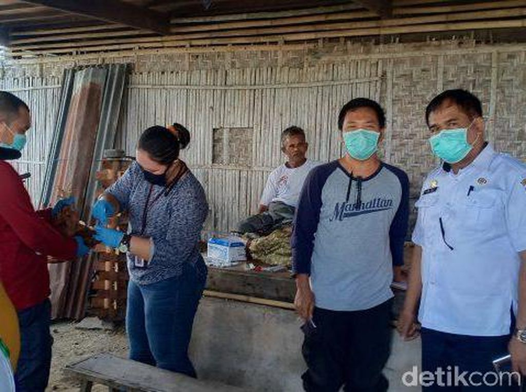 Saat Corona Mewabah, 6.000 Lebih Unggas di Sidrap Mati Akibat Flu Burung