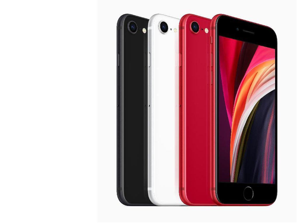 iPhone SE, Ponsel Murah Apple Goda Pengguna Android Hijarah ke iOS