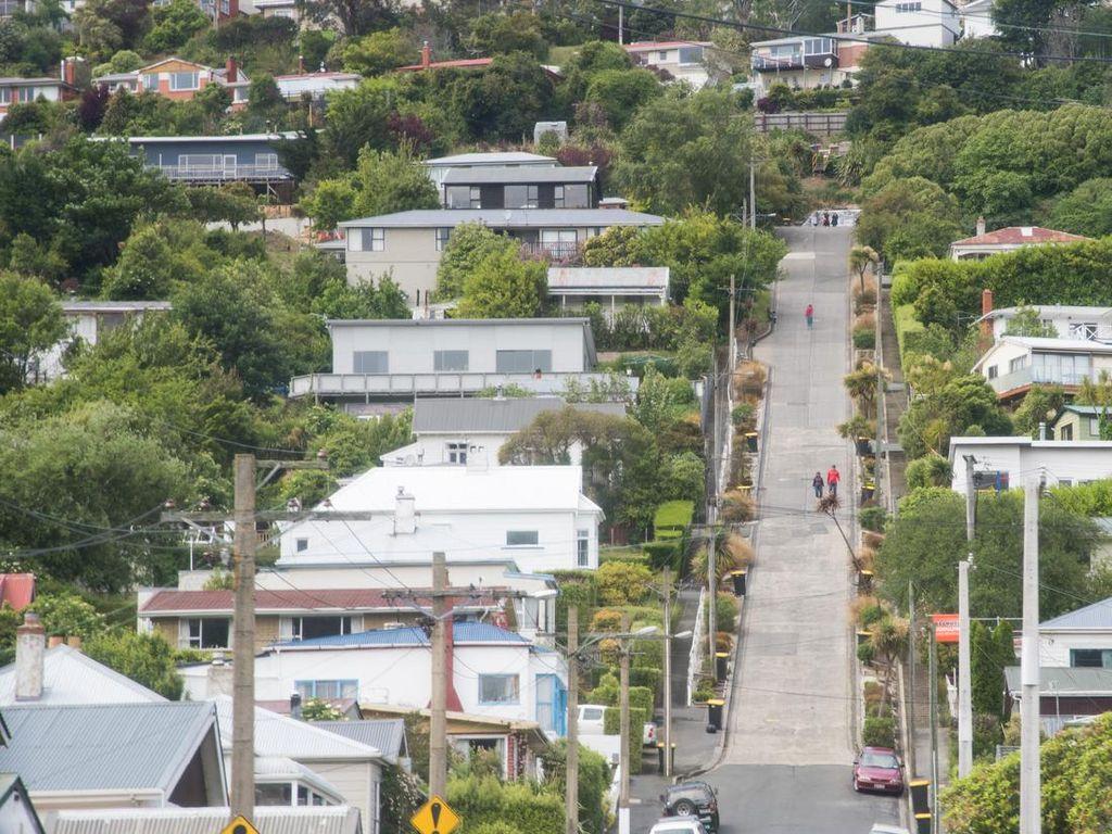 Adu Terjal, Jalan di Selandia Baru Ini Jadi Pemenangnya Lagi