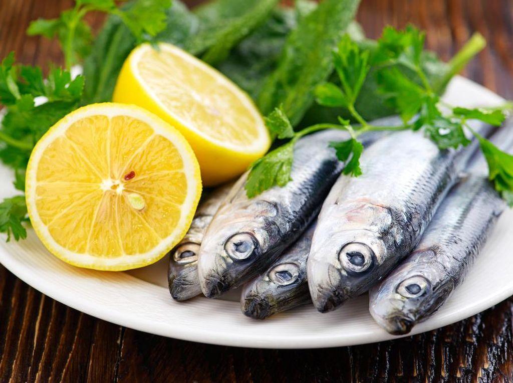 Nutrisi yang Bisa Optimalkan Kecerdasan Anak Ada di Ikan Sarden