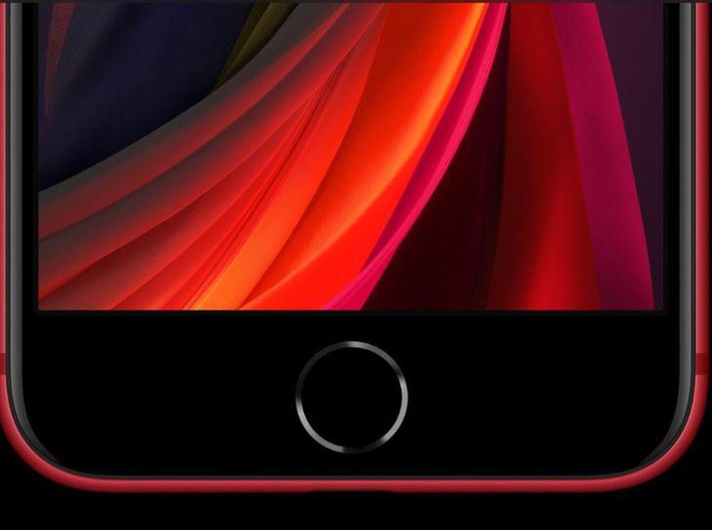 iPhone 13 Bakal Pakai Touch ID Bawah Layar?