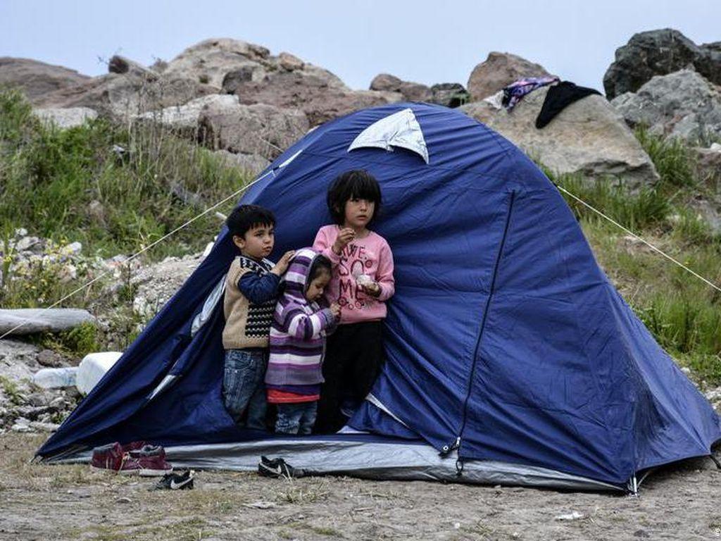 Dari Yunani ke Jerman, Bagaimana 58 Pengungsi Anak Memulai Kehidupan Baru?
