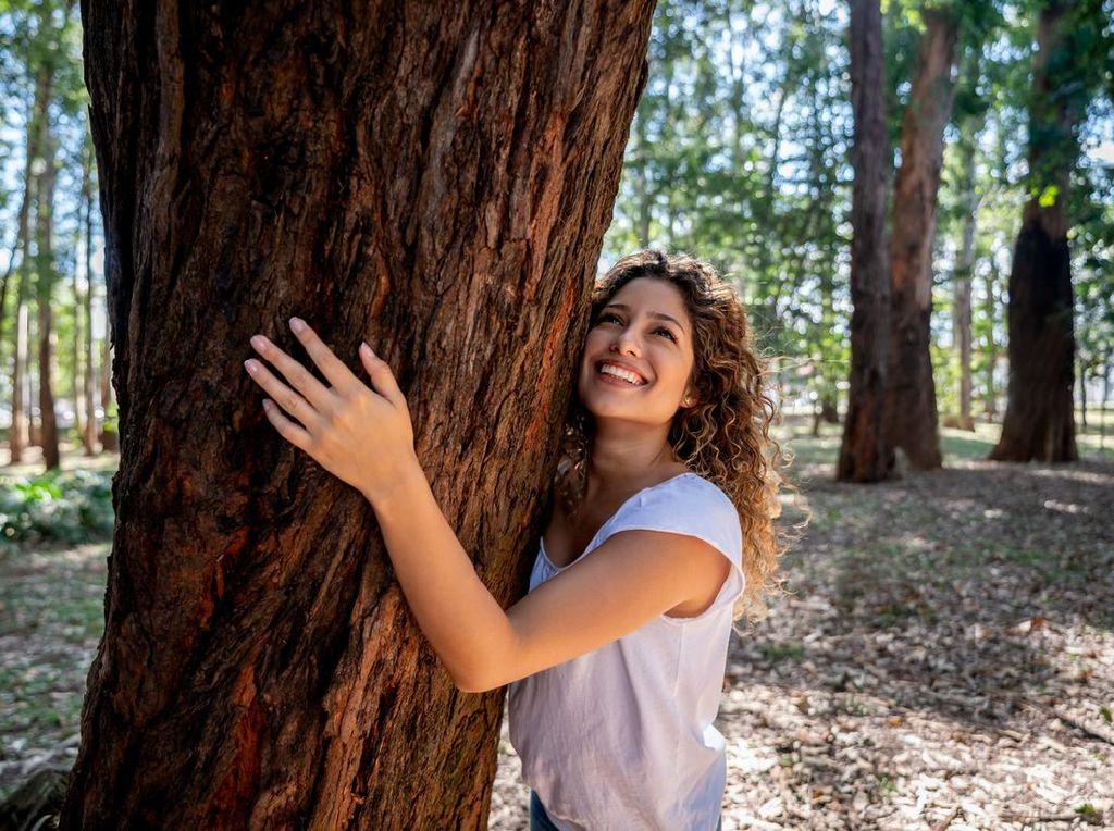 Stres di Rumah? Coba Peluk Pohon Besar Selama 5 Menit